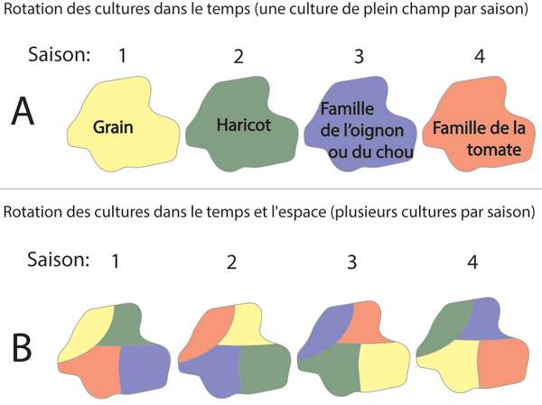 EDN145 figure 6 French