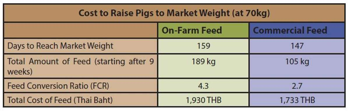 AN 42 Pig Feed Table4 correct